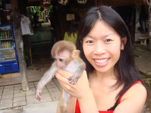 Ling & Ling Ling the baby monkey