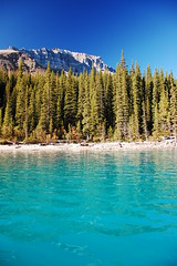 Water of Moraine Lake (renata_souza_e_souza) Tags: trip travel blue autumn vacation lake holiday canada mountains fall nature water landscape nikon ab landmark paisagem september explore alberta experience viagem banff nikkor moraine vr banffnationalpark 18105 torquoise d40 18105vr