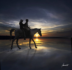 A Wonderful World. (Tomasito.!) Tags: world sunset horse woman sun man reflection love tourism beach nature beautiful animal silhouette clouds wonderful nikon couple darkness earth ripple magic philippines surreal manipulation tourist nostalgia trust camiguin conceptual nikkor magical stallion touristspot pilipinas tms 18105 companionship galope d90 cagayandeoro tellmeastory beautifulplace ridingahorse justclouds awonderfulworld 18105mm nikond90 fbdg saariysqualitypictures mygearandmepremium mygearandmebronze peopleridingahorse magicalphoto