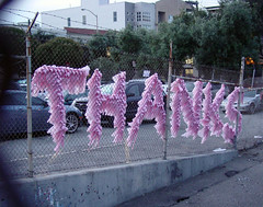 Thanks (glennbphoto) Tags: sanfrancisco pink fence guesswheresf foundinsf tissuepaper gwsf5party gwsflexicon