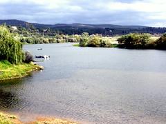 Constncia (Miguel Tavares Cardoso) Tags: portugal rio river tejo tagus constncia jajo naturepeople miguelcardoso flickraward worldtrekker miguelcardoso2008 migueltavarescardoso