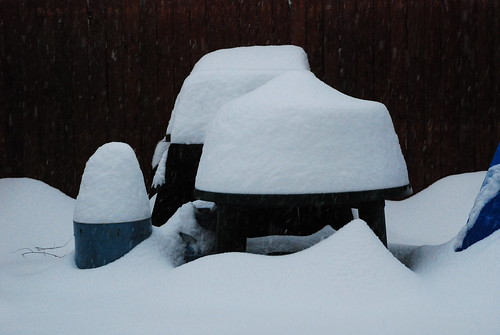 """Our back """"yard"""", covered in snow"""