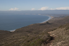 Point Reyes Coast Photo