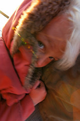 baudchon-baluchon-terre-de-feu-15