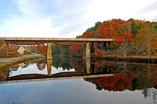 bridge trees canada reflection water nikon novascotia free dennis jarvis d300 iamcanadian 18200vr ingramport lighthouseroute dennisjarvis archer10 dennisgjarvis