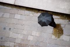 A rainy day in Venice / I. (zsozso68) Tags: venice italy reflection rain umbrella canon eos italia day pedestrian rainy venezia 3000v luxtop100 fotofülhu