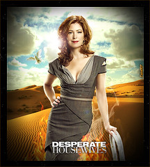 75. Desperate Housewives  Katherine Season 6 (Isael107) Tags: 6 season dvd d katherine dana desperate housewives burn lane abc universal studios wisteria especial delany isael107 mayfeir