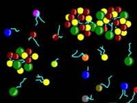 Genoma compuesto