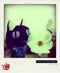 一起去看花吧~