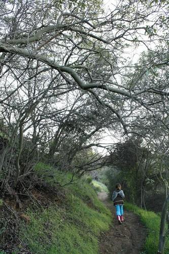 Cabarello Canyon :: Saturday hike