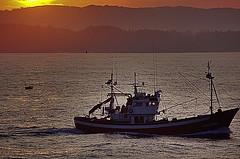 llegando a puerto......... (PHENIX.) Tags: mar nikon nikond50 amanecer santander cantabria barcodepesca oceanos bahiadesantander phenixsantander