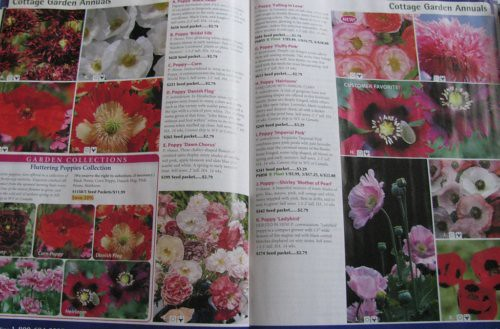 poppy pages in select seeds