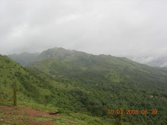 DSCN3014 (pingrajesh) Tags: nature forest hills madikeri
