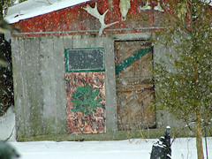 a rare day this winter (Églantine) Tags: old italy snow ontario art history colors wow fun snowflakes skull soft labrador shed adventure bones kansas stories greenman antler spattering