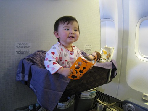 Overjoyed with the airplane's bassinet