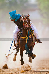National Tent Pegging Competition 2010 (GHULAM RASOOL MUGHAL) Tags: pakistan horses heritage club culture photographers punjab 92 gallop ppc flyinghorse gujrat mughal horseriders munder ghulam rasool tentpegging ghulamrasool culturalsports tentpeggingcompetition punjabculture