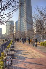 landmark_tower_HDR (aromabird) Tags: yokohama hdr japanhdr