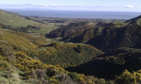 Whareroa Farm view