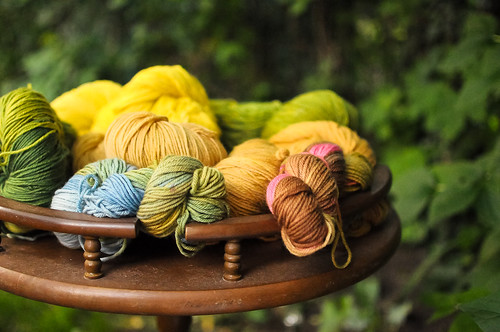Advanced Natural Dyeing Reunion