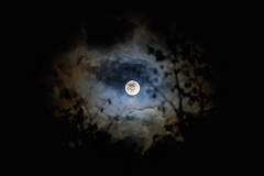 Lunar IV (::YS::) Tags: yann savalle yannsavalle yasa moon lune lunar night clouds nuages ambiance clair obscur clairobscur nuit ciel sky haze halo red redhalo