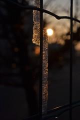 DSC_3185 (masierofrancesco.gnappo) Tags: tramonto sunset ice ghiaccio italia italy