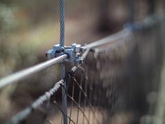 Just hold it together (Vincent F Tsai) Tags: bokeh wire cable bridge dof vintage minolta rokkor metabones speedbooster walk hike trail woods nature tension panasonic lumixgx8 manual