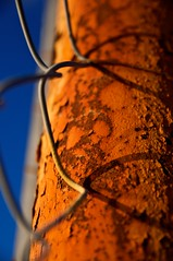 The  surface of Mars (4buttercup) Tags: orange texture fence rust peeling surface pole chainlink olympicvillage