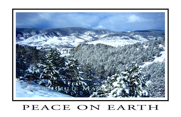 blue Colorado Mountain Valley Holiday Card
