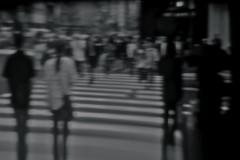 Zebra crossing definition (Brendan  S) Tags: summer people blackandwhite white black blur art blancoynegro blanco june japan umbrella rebel calle sapporo blurry hokkaido cross bokeh negro pedestrian ciudad blurred ciudades dreams zebra pedestrians nightmare umbrella