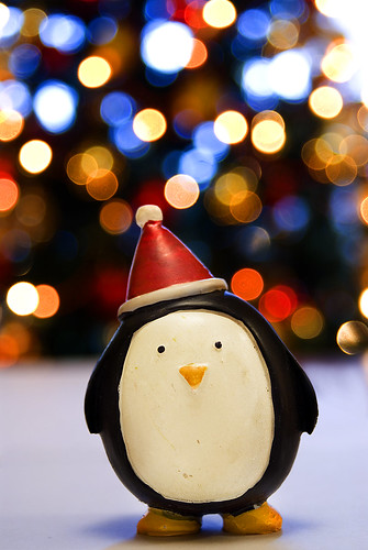 HAPPY CHRISTMAS BOKEH! XXX