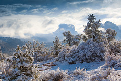 winter wonderland - sedona - Laura Travels