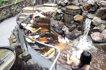 04_coffee pool japan