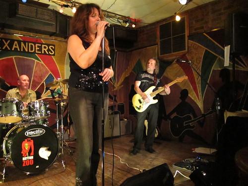 Rhythm Zoo - Alexanders Chester