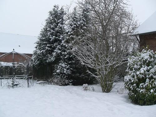 winter 008