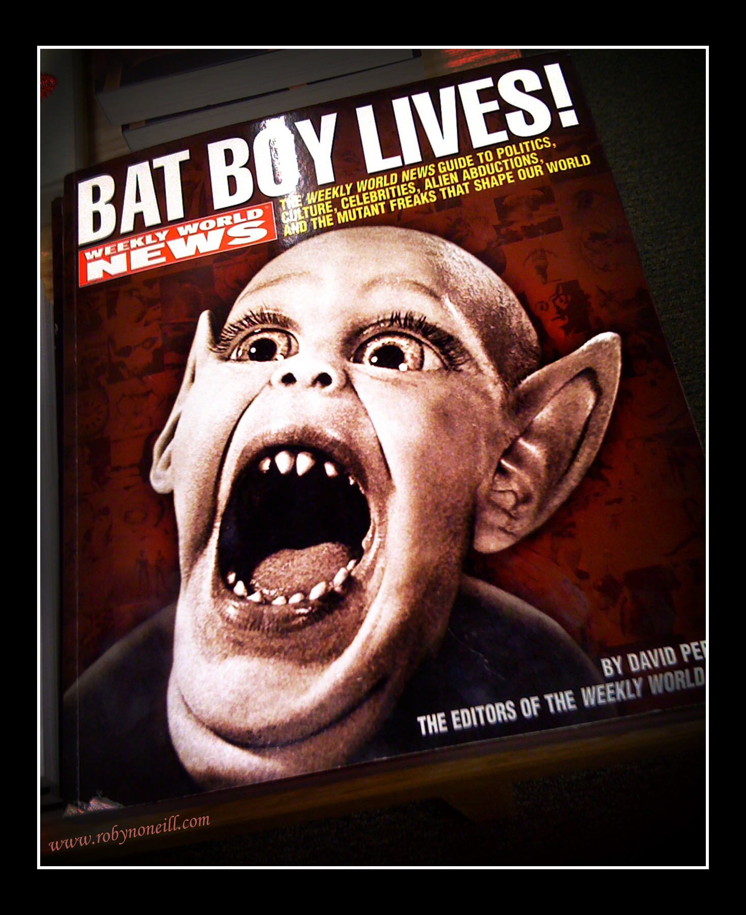 bat boy lives