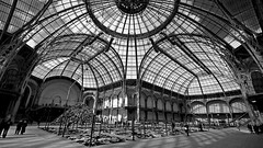 Glass roof at Grand Palais (Le Shann) Tags: roof bw paris glass architecture blackwhite angle grand wideangle palais glassroof grandpalais verrière