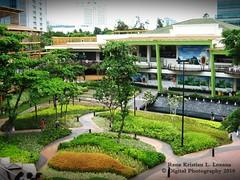 Ayala Center Cebu City, Philippines (rk1600) Tags: travel tree green tourism nature canon mall garden landscaping philippines terraces cebu pointandshoot ayala pilipinas canona470