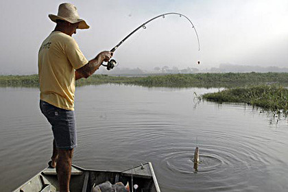 carteira pesca profissional licença