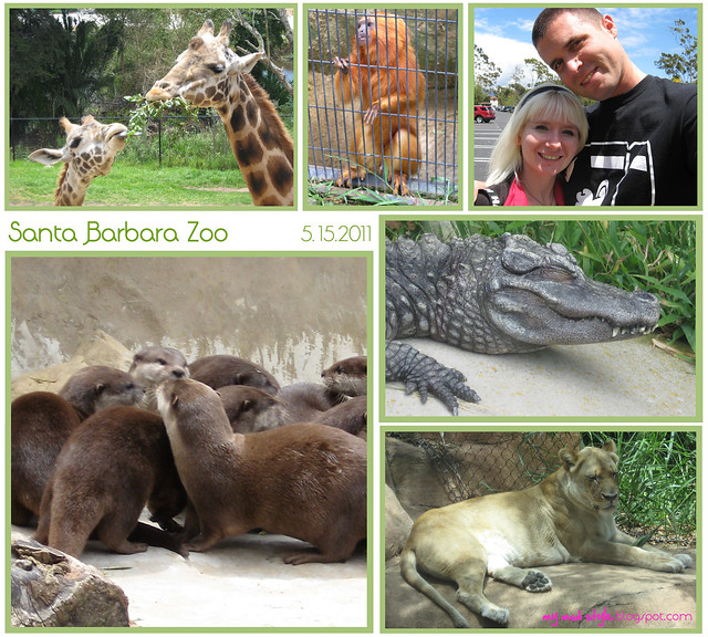 california sb zoo collage2