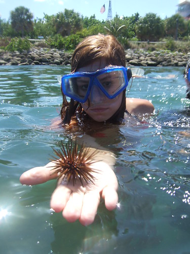 Casey with sea urchin