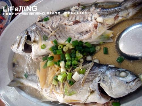 091018竹圍漁港018