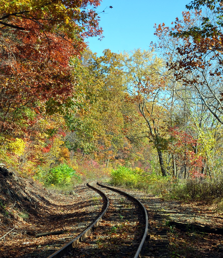 Fall foliage along the Providence & Worcester railroad tracks in Lisbon, Connecticut