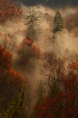 Red River Gorge, Rush Creek valley. (Ulrich Burkhalter) Tags: naturesfinest naturesgallery pentaxart naturesgreenpeace passiondclic