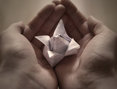 A gift for you (kelxkel) Tags: art love rose paper hands origami special gift offering present