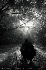 Explorer [Lauachara Rain Forest . Srimongol] (AvikBangalee) Tags: morning blackandwhite bw fog forest nikon rainforest photographer explorer sigma ttl 1020mm ultrawide sylhet bangladesh lightray d90 forestcanopy throughthelens srimongol lauachara kamrulhasan nikond90bw