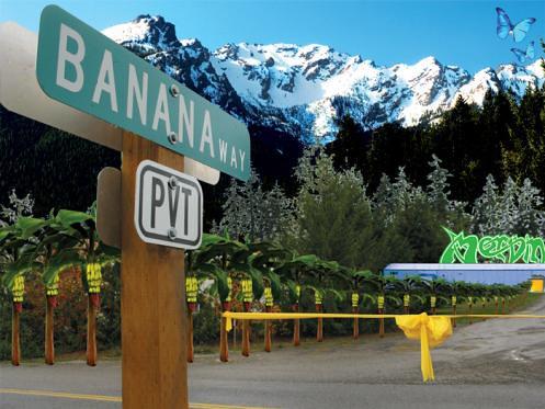 Banana Way