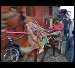 Zooom ..inside Marrakech (cole97 :-)) Tags: africa morocco marocco marrakech souk jama