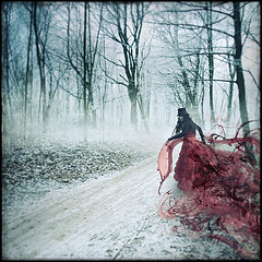 lady of myths (biancavanderwerf) Tags: blue winter red snow cold ice hat lady square dress silk bianca cloth myth dreamcatcher topseven specialpicture graphicmaster