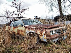 Cutlass Update 1 (BACKYard Woods Explorer) Tags: abandoned weeds rust decay oldsmobile abandonedcars cutlasssupreme