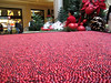 we got a little excited staring at this pool of cranberries.
